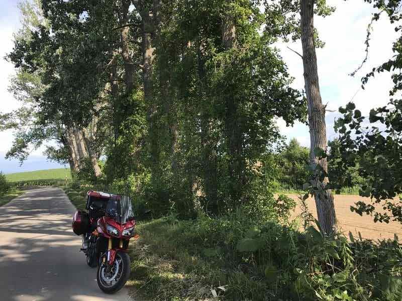 美瑛の小道とバイク