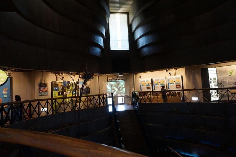釧路湿原展望台内部の展示