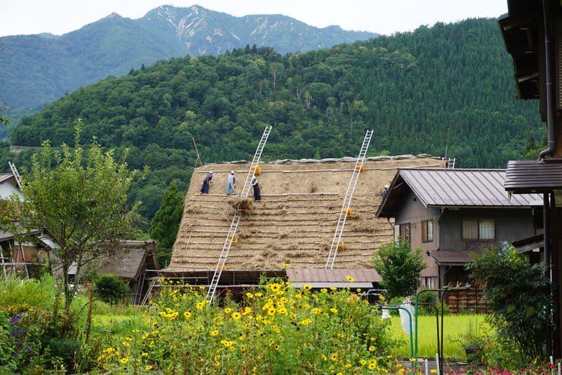 白川郷の屋根張り替え